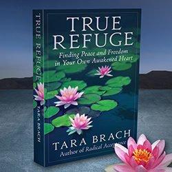 Tara Brach Website and Book Design